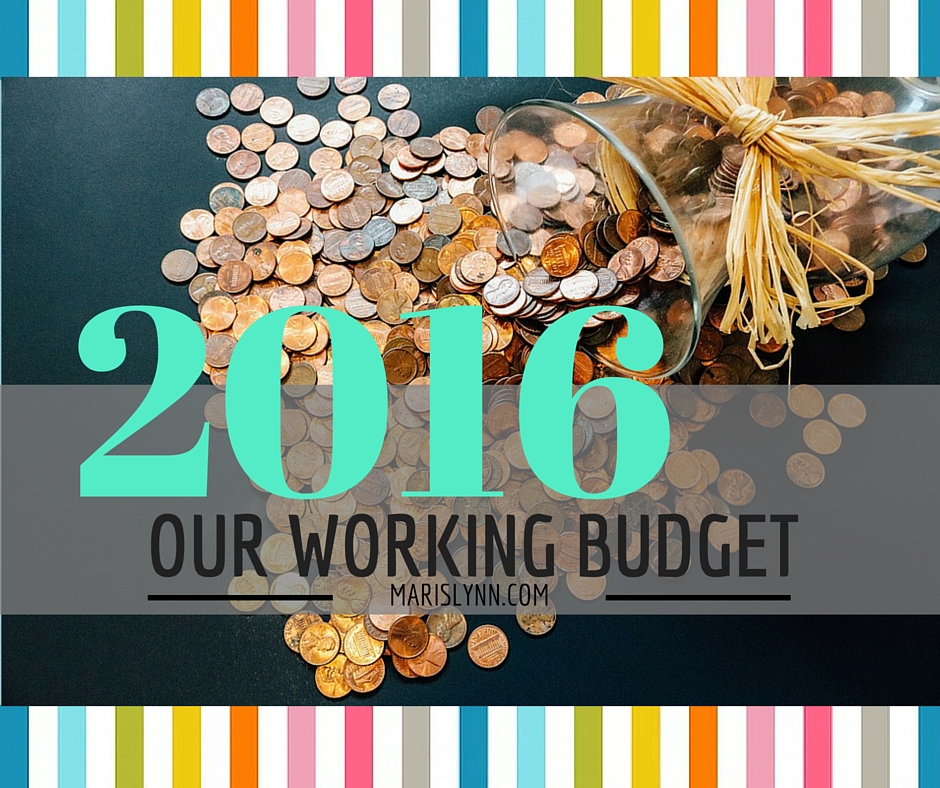 Our Working Budget for 2016